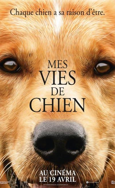 Mes vies de chien, affiche du film